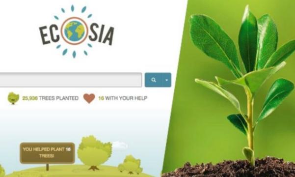 Ecosia: le moteur de recherche écolo qui vous propose d'aider à planter des arbres