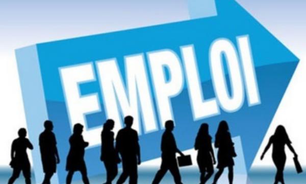 HCP: 117.000 emplois créés en un an